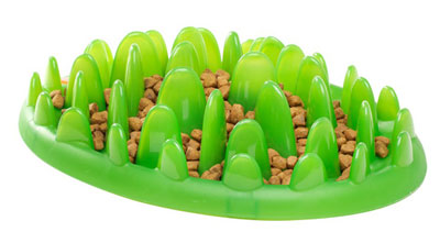 green-dog-feeder