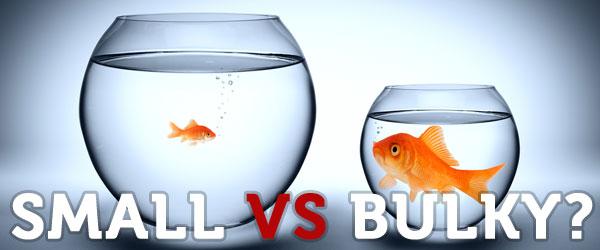 small-vs-bulky